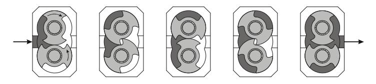 How does a Lobe Pump work?